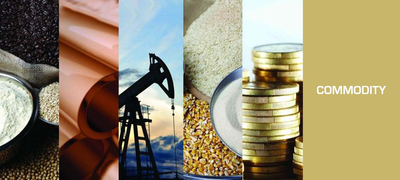 Commodity market in India, MCX commodity, NCDEX commodity, commodity trading